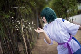 Photoshoot of Spirited Away by Hexlord