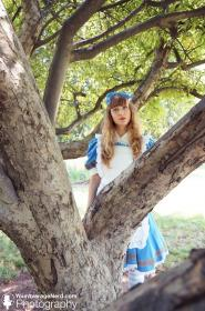 Photoshoot of Heart no Kuni no Alice ~ Wonderful Wonder World~ by YourAverageNerd